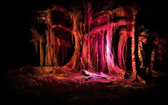 anima-mundi-a-midsummer-light-s-experience