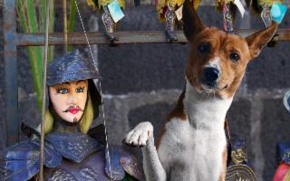 Un viaggio in Sicilia, in piena sicurezza, insieme al tuo cane!