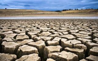 Il progetto di una startup siciliana contro siccità e desertificazione