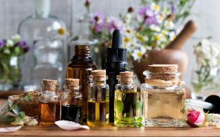 Dalla Sicilia un nuovo modo per estrarre gli oli essenziali dalle piante officinali