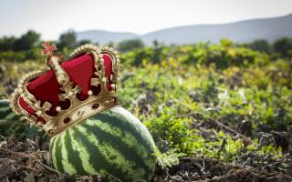 L'anguria è la regina della tavola estiva e se viene da Siracusa lo è ancora di più!