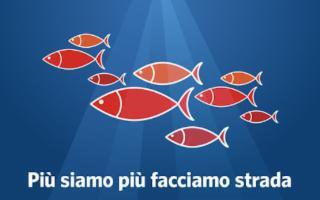Lungo le ''Strade del tonno rosso di Sicilia''