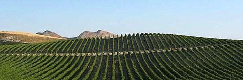 La Strada del Vino e dei Sapori dei Castelli Nisseni
